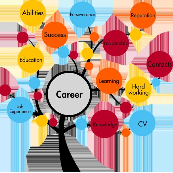 sized-career